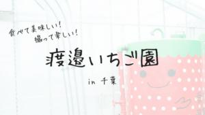 千葉県君津市でイチゴ狩り!「渡邉いちご園」は食べて美味しい!行って楽しいイチゴ園だった!