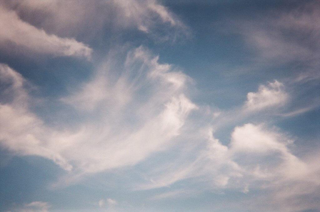 写ルンです 風の強い日の空