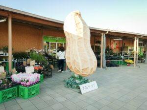 木更津市初の道の駅。「うまくたの里」は千葉の味覚を全部味わえる!