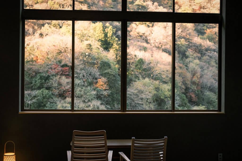 箱根 雉子亭 豊栄荘 景色